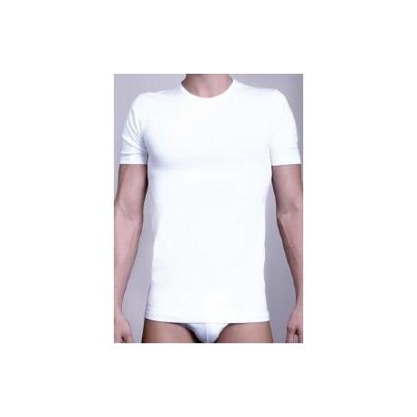 T-Shirt M/M PIERRE CARDIN Art. 100 Conf. 3 pz